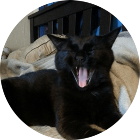 Lily – Happy Tails Submission