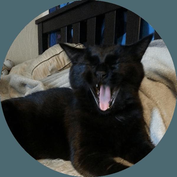 Lily yawning
