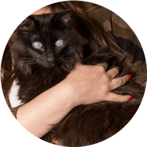 Maleficent – Happy Tails Tuesday